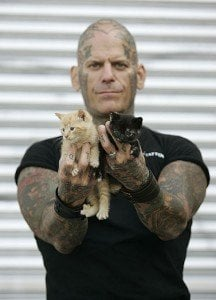 Biker-cats
